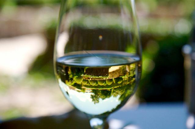 understanding-wine-jargon
