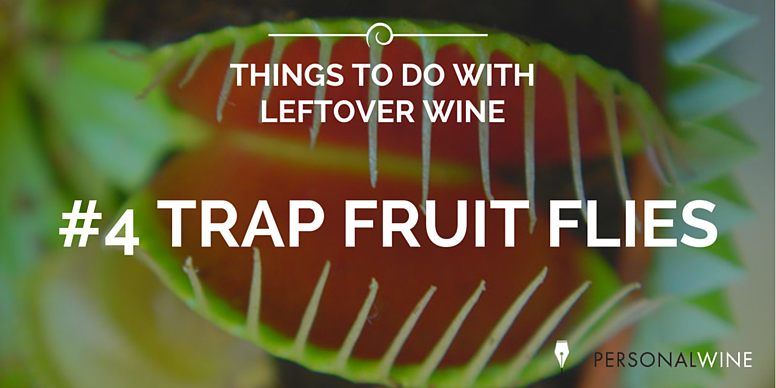 THINGS_TO_DO_WITH_LEFTOVER_WINE_8.png