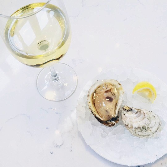 organic white wine oysters