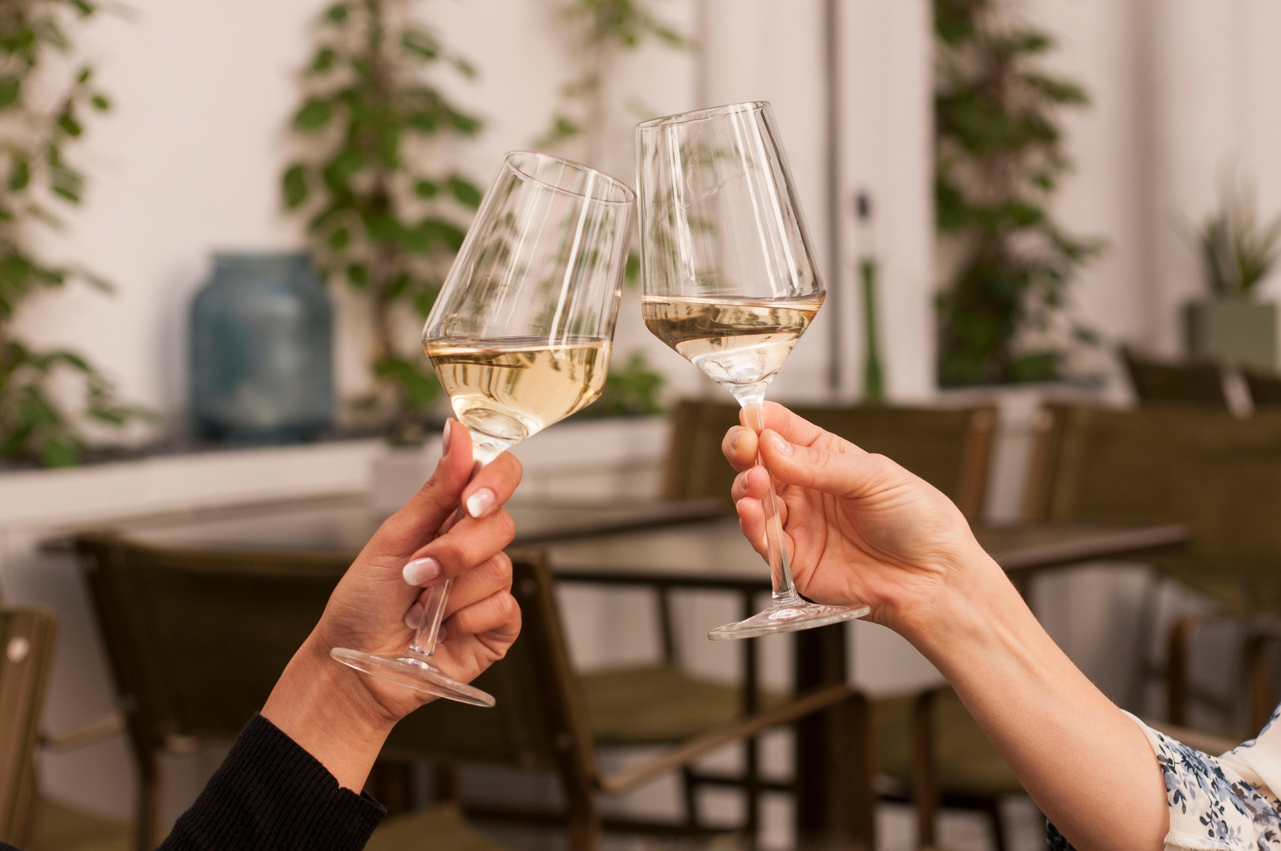 white wine glasses clinking cheers